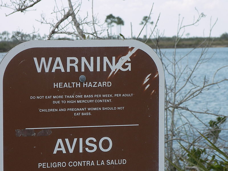 an analysis of the dangers of the problem of mercury in the florida everglades East everglades resources planning project : proposed management plan  east everglades resources  salt intrusion problem is a constant threat in south florida.