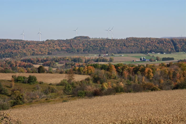 Covering much of central New York State is a mosaic of forest, pasture, and cornfields punctuated by lakes, small towns, rural residences, and sometimes wind turbines (© Peter Klepeis)