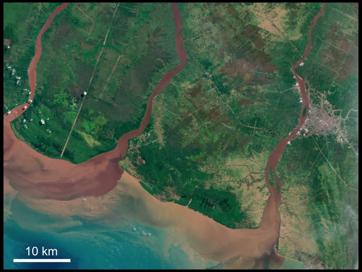 Deforestation, palm oil plantations, and erosion in Kalimantan, Borneo, Indonesia.