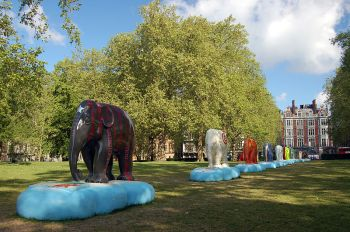 Elephant_Parade,_Green_Park,_London_(4655933530)