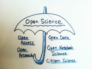 Open Science Umbrella. Image credit: Flikr user 지우 황 CC BY 2.0