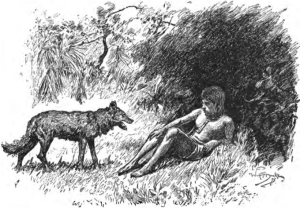The 'man cub'; not quite man, not quite wolf Source: Wikimedia Commons